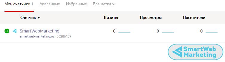 Метрика установлена на сайт